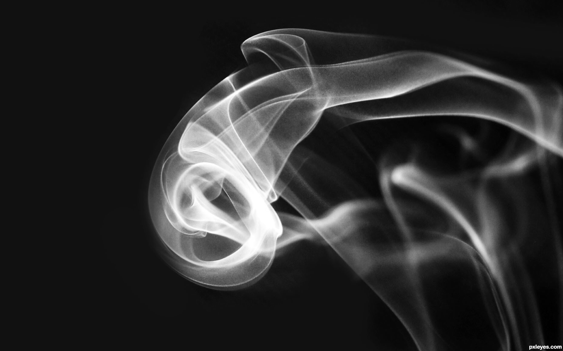 Black and white picture by emilymnewell for creative smoke 2