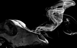 SmokingKilzzz