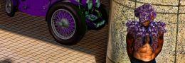 Guarding the Amethyst Car