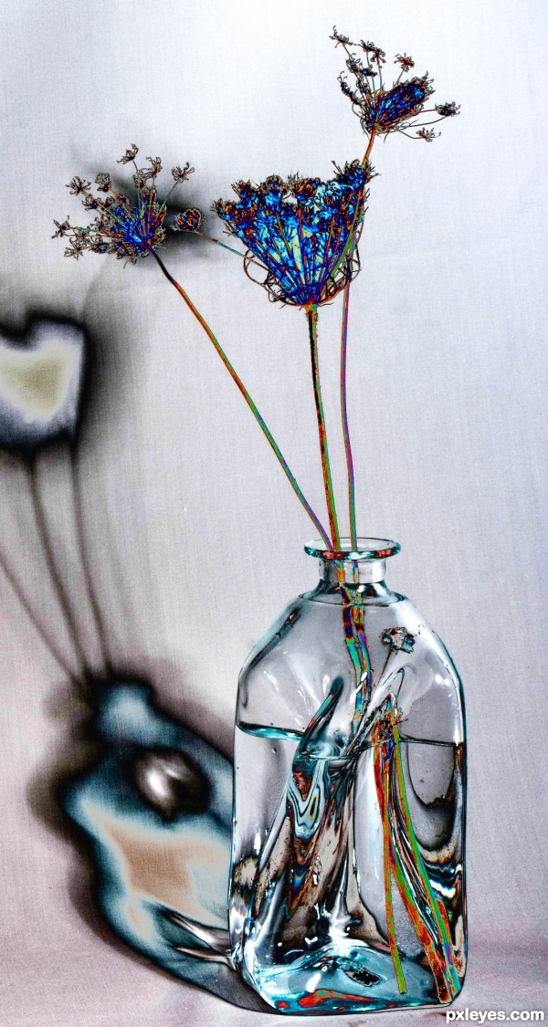 weeds in a vase