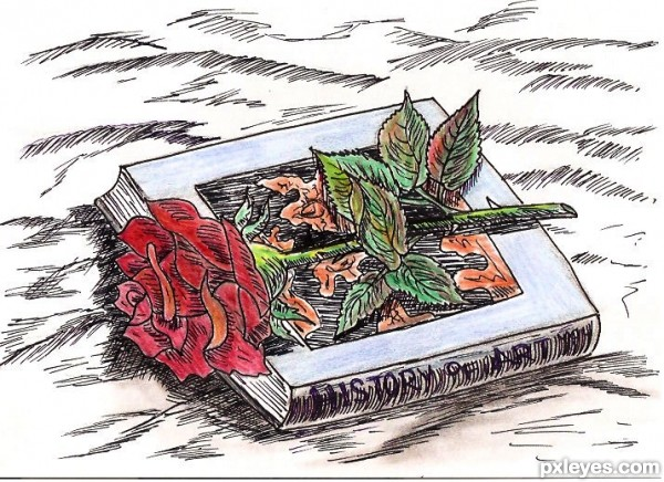 Book & Rose