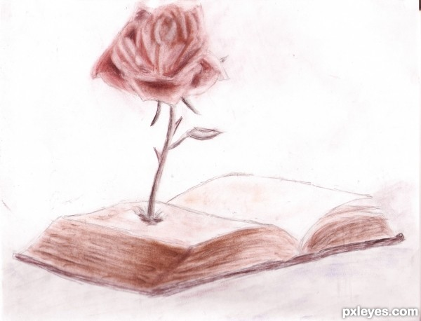 Growing Rose