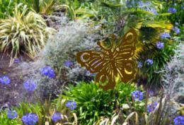 FlutteringButterfly