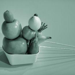 fruitonthemove