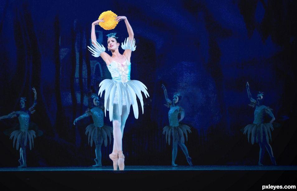 Ballerina dream come true