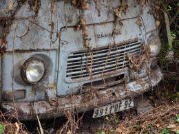 Broken Peugeot