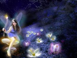 Fairys garden