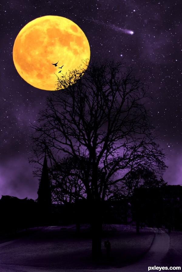 Tree of life at night