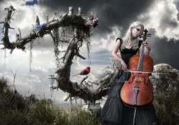 Melody Of A Dead Tree