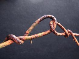 linked to rust