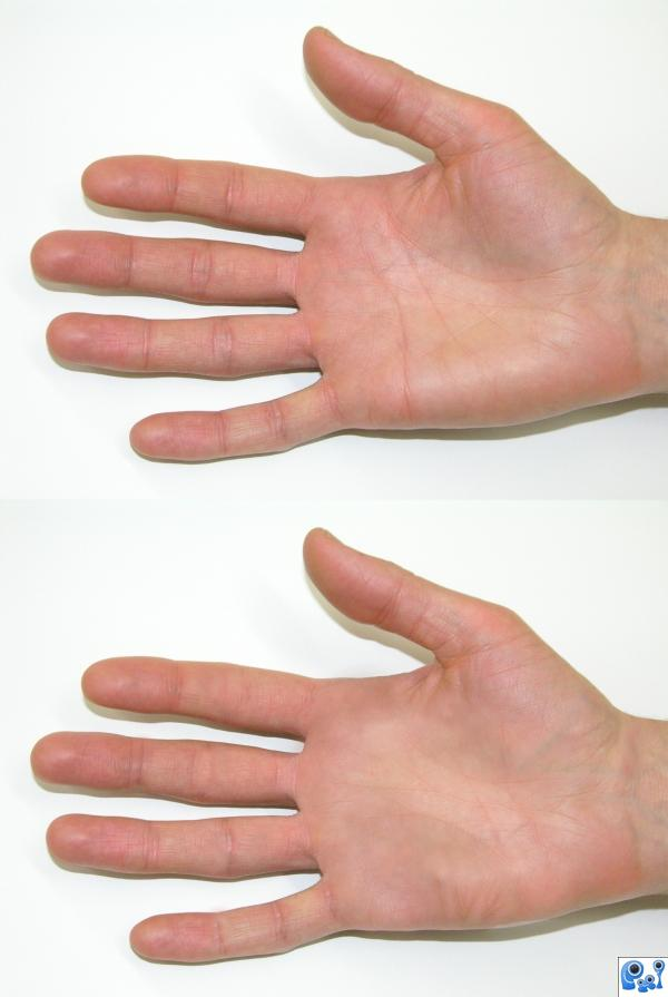 Creation of hands: Final Result