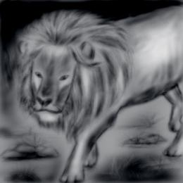 Run.....Its a lion......