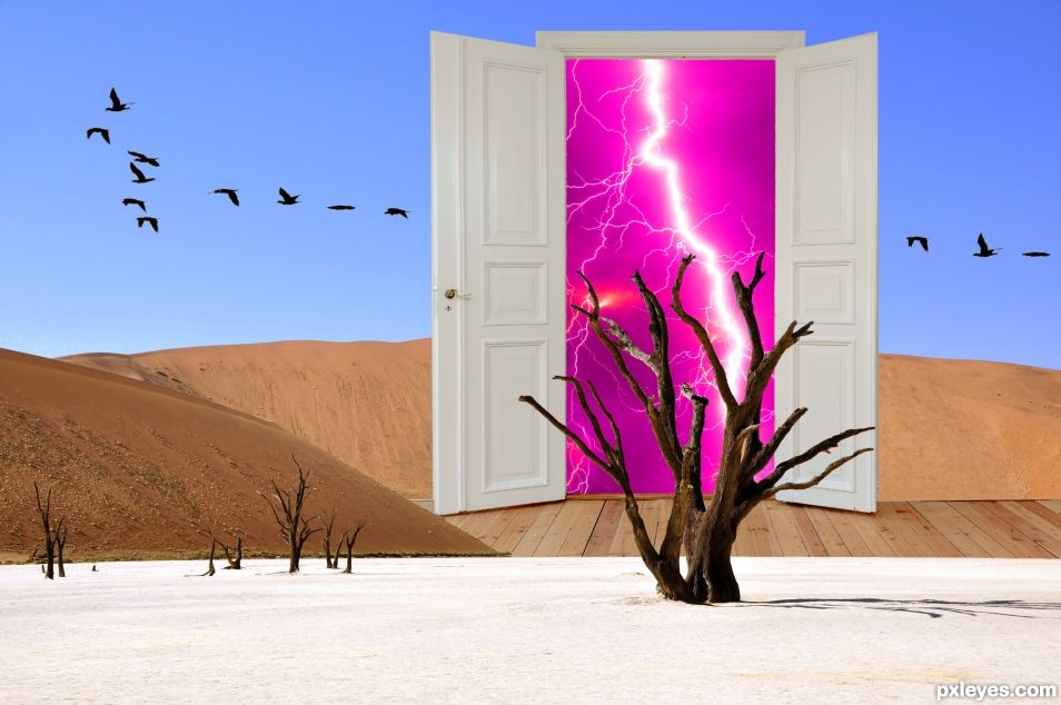Desert Storm Door
