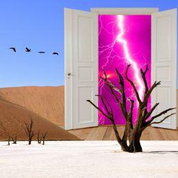 DesertStormDoor