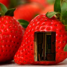 StrawberryDoorway