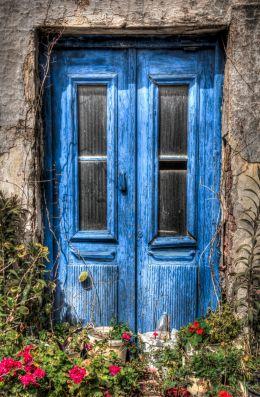 Floral Abandoned Door...