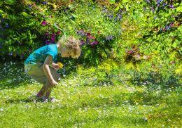 Picking flowers in Flowerland