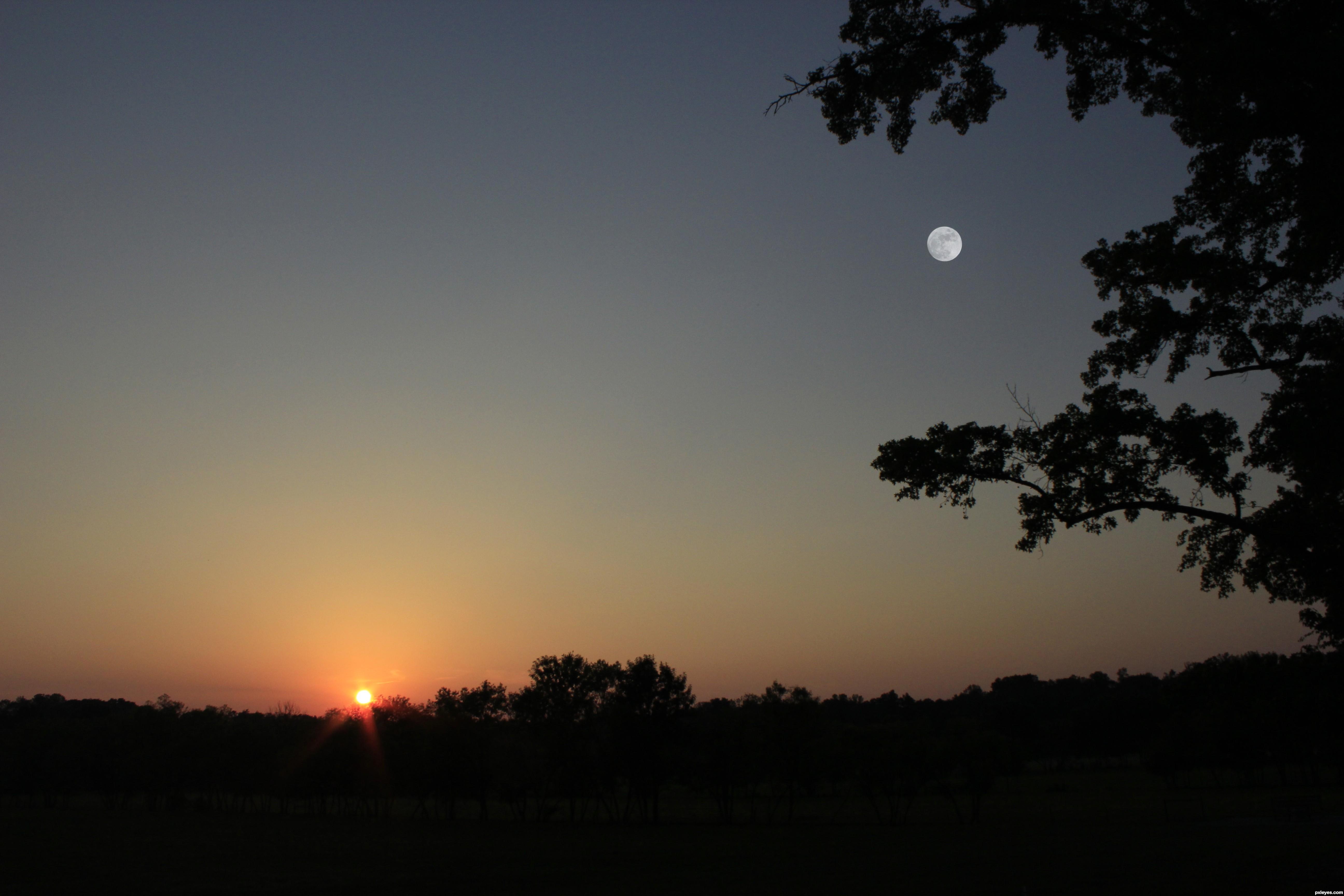 moon or sun