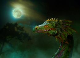 Dragon in the myst