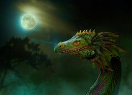 Dragoninthemyst