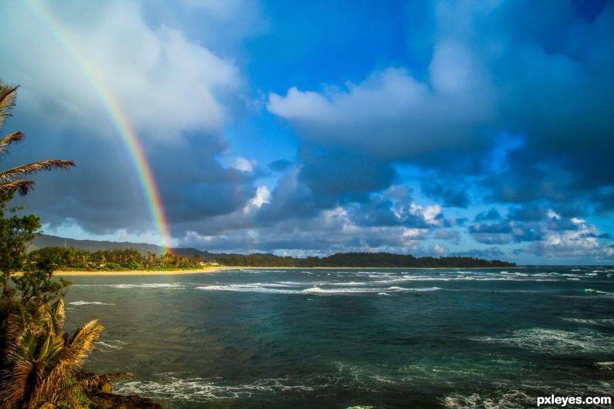 Oahu Bow