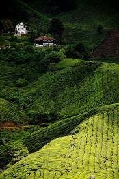 villa on hill