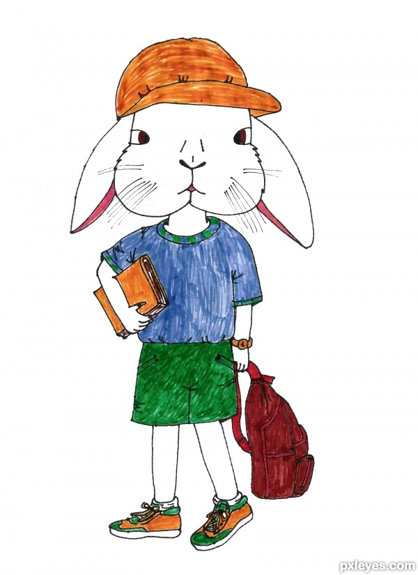 Rabbit to school