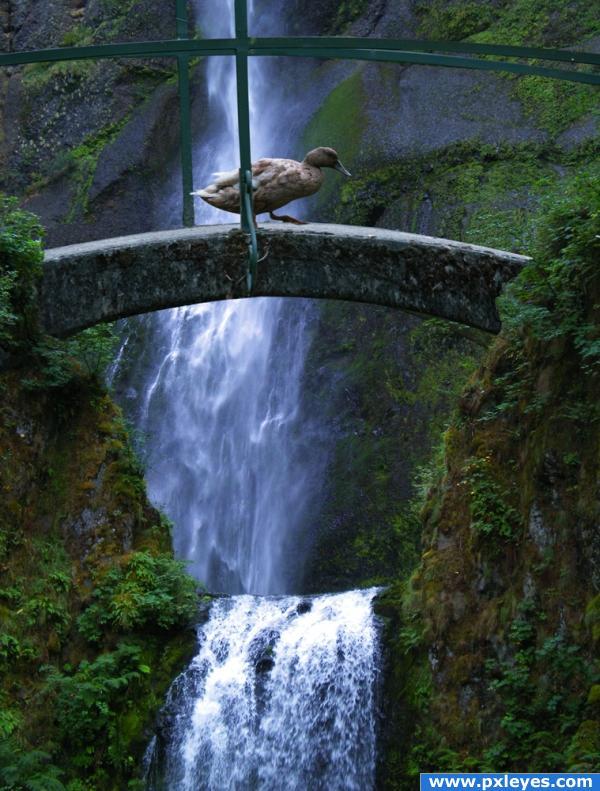 Crossing the Waterfall.