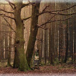 WeeBruceoftheForest