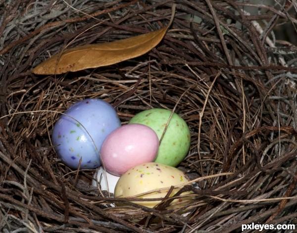 Rabbit nest ?