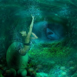 born mermaid Picture