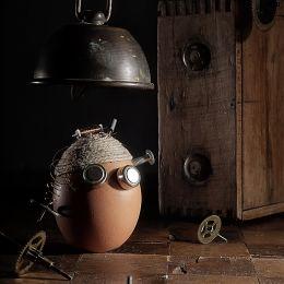 Eggperiment