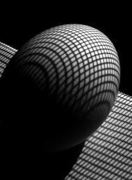 Egg Lines