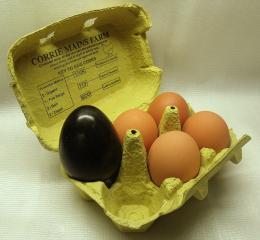 eggstrordinary