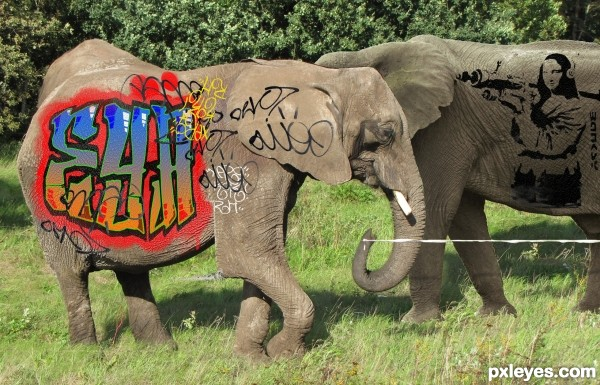 Lets paint some elephants