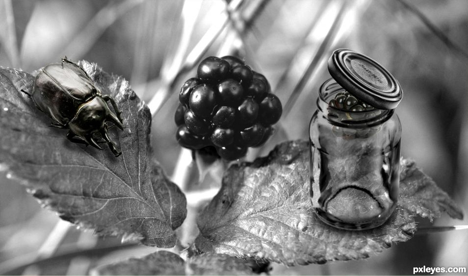 Beetle Black Berry Jar