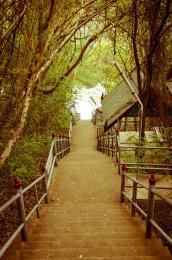 Stairwaydown