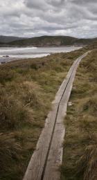 Woodenpath