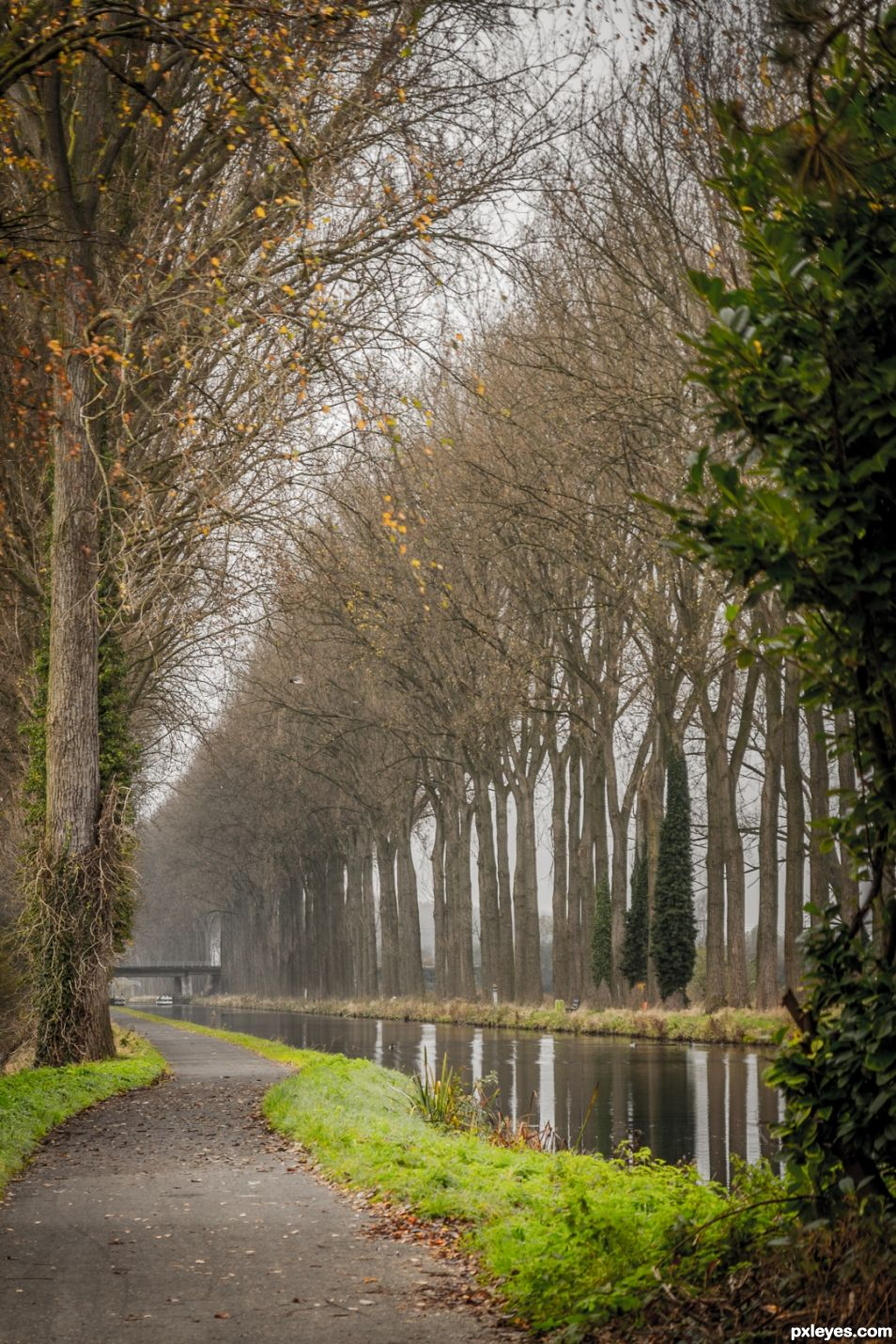 Peacefull walk