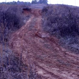Dirt path  Picture