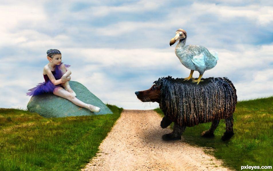 The Dodos walk