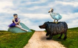 The Dodos walk