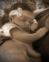 Caydence
