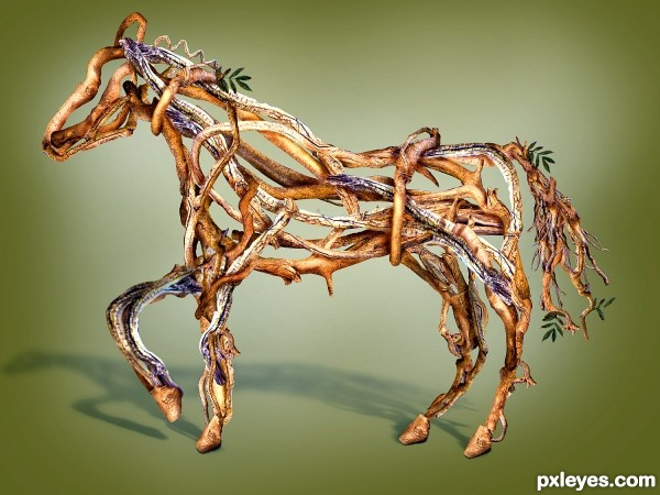 Roots Horse photoshop picture