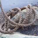 entangled rope source image
