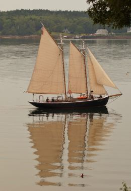 Four sails on the still day