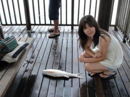 Whatfish
