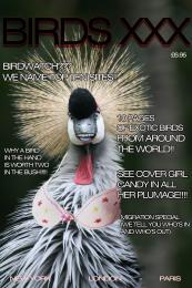 birds xxx