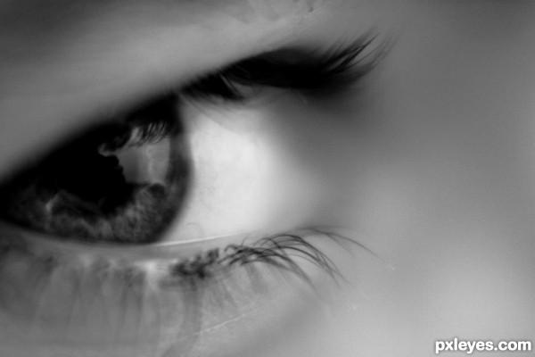 Gemmas Eye