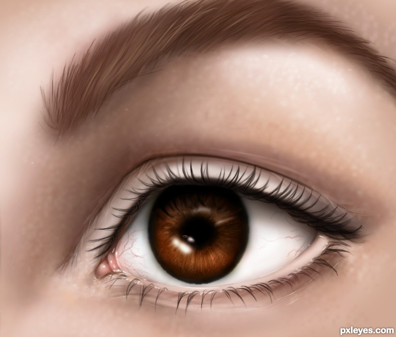 """an eye for an eye will """"if anyone injures his neighbor, as he has done it shall be done to him, fracture  for fracture, eye for eye, tooth for tooth whatever injury he has."""